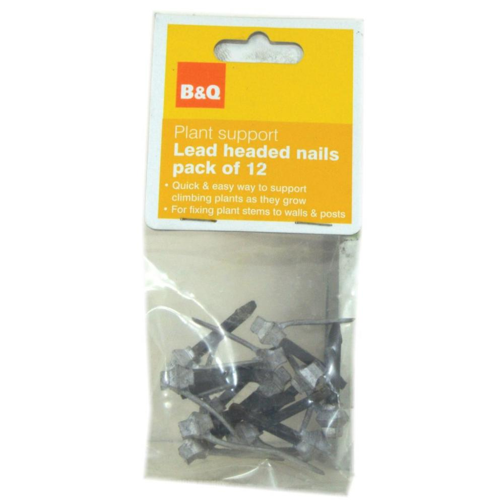 B and Q Lead Headed Nails - Pack of 12