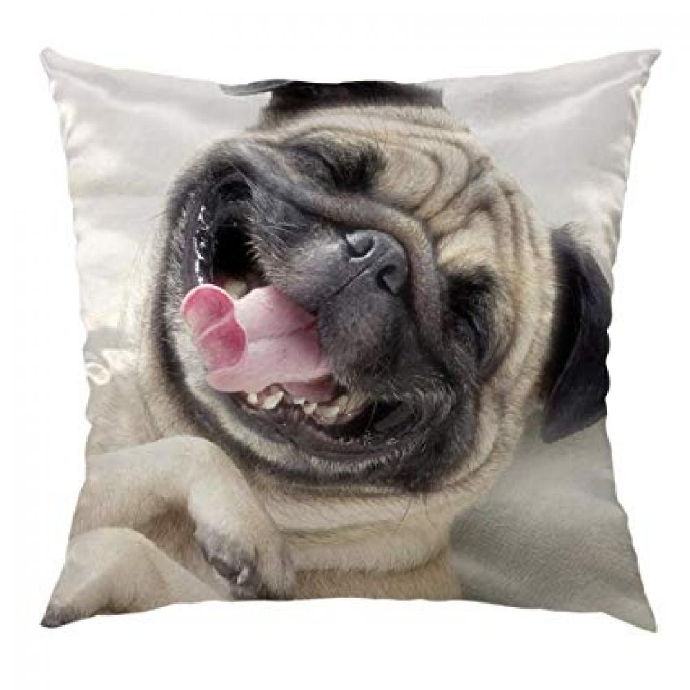 Unbranded Pug Cushion