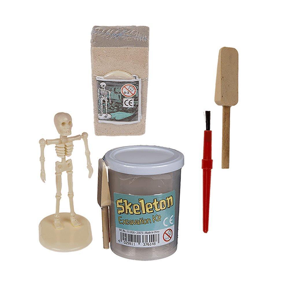Unbranded Skeleton Excavation Kit