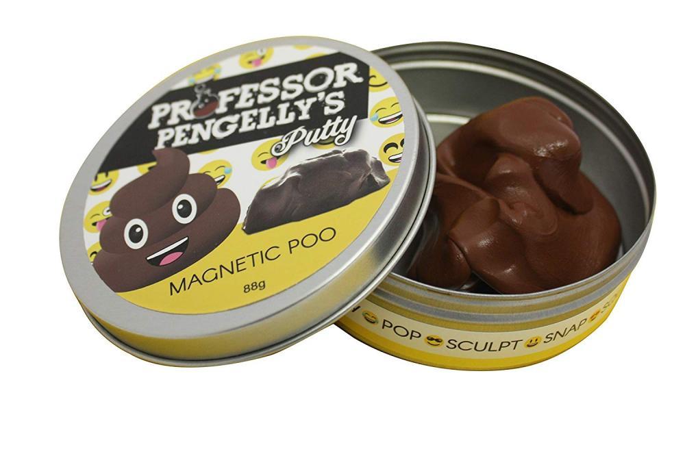 Professor Pengellys Magnetic Poo Putty