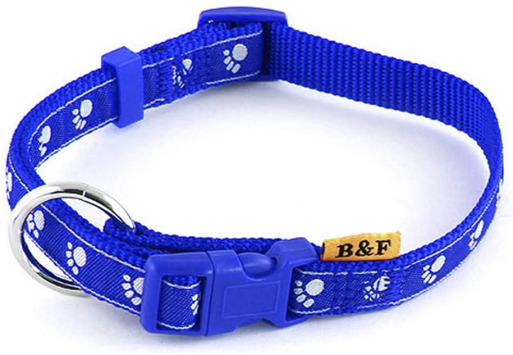 B And F Paws Collar Blue 2.5 x 40 to 66 cm