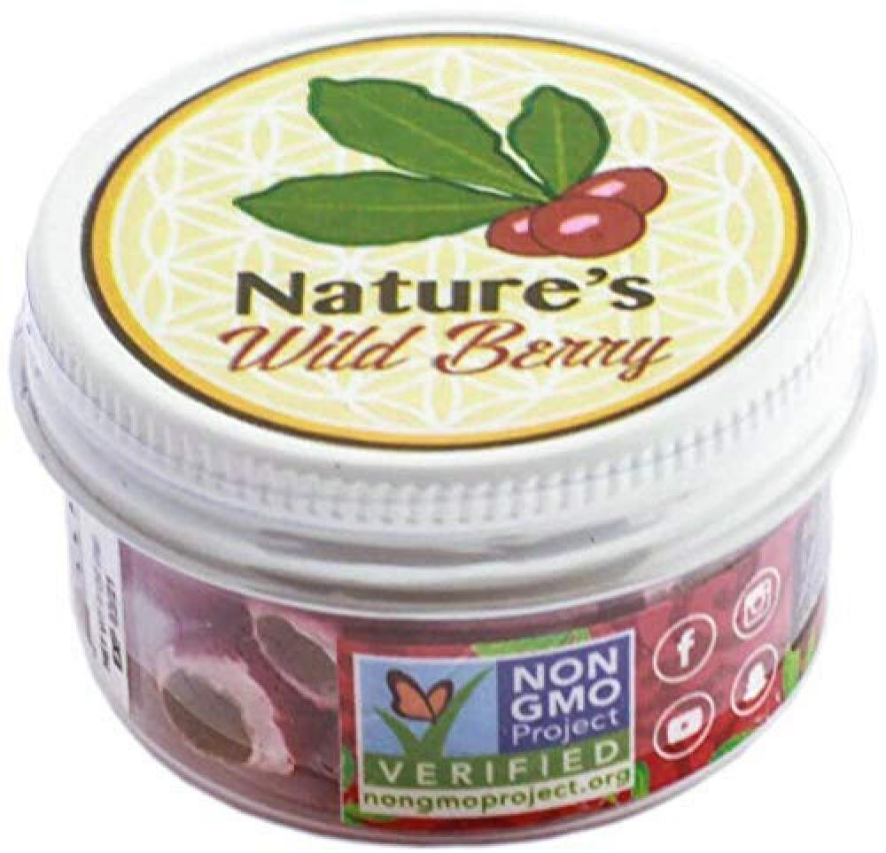Natures Wild Berry Berries On The Go 3g