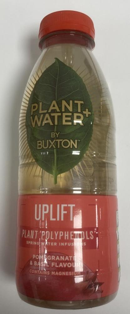 Buxton Plant Water Pomegranate and Basil 500ml