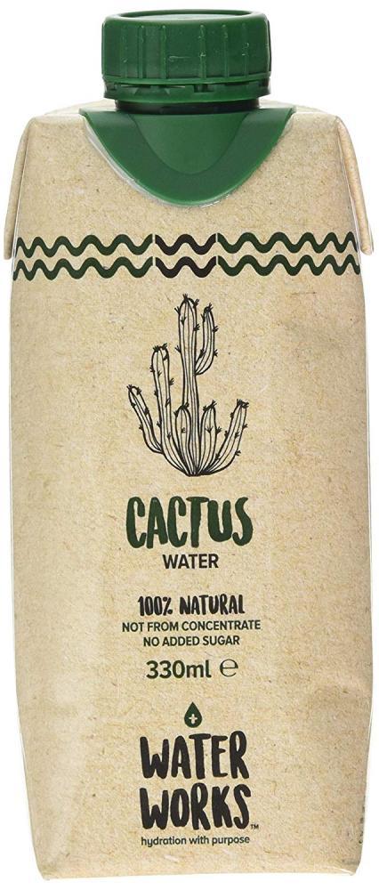 Water Works Cactus Water 330ml