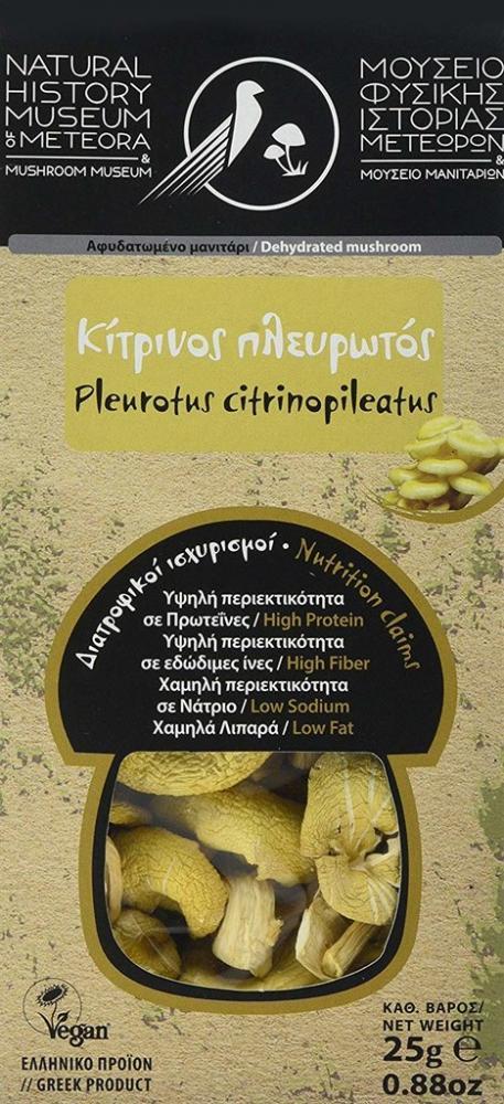 Natural History Museum of Meteora Dehydrated Pleurotus Citrinopileatus Mushrooms 25g