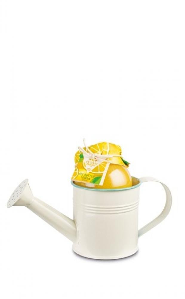 Cottage Delight Luscious Lemon Mini Planter