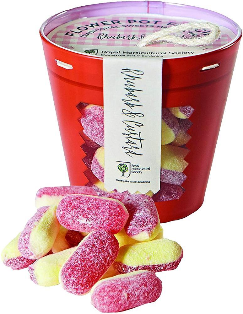 RHS Gourmet Candy Company Rhubarb and Custard Plant Pot 175g