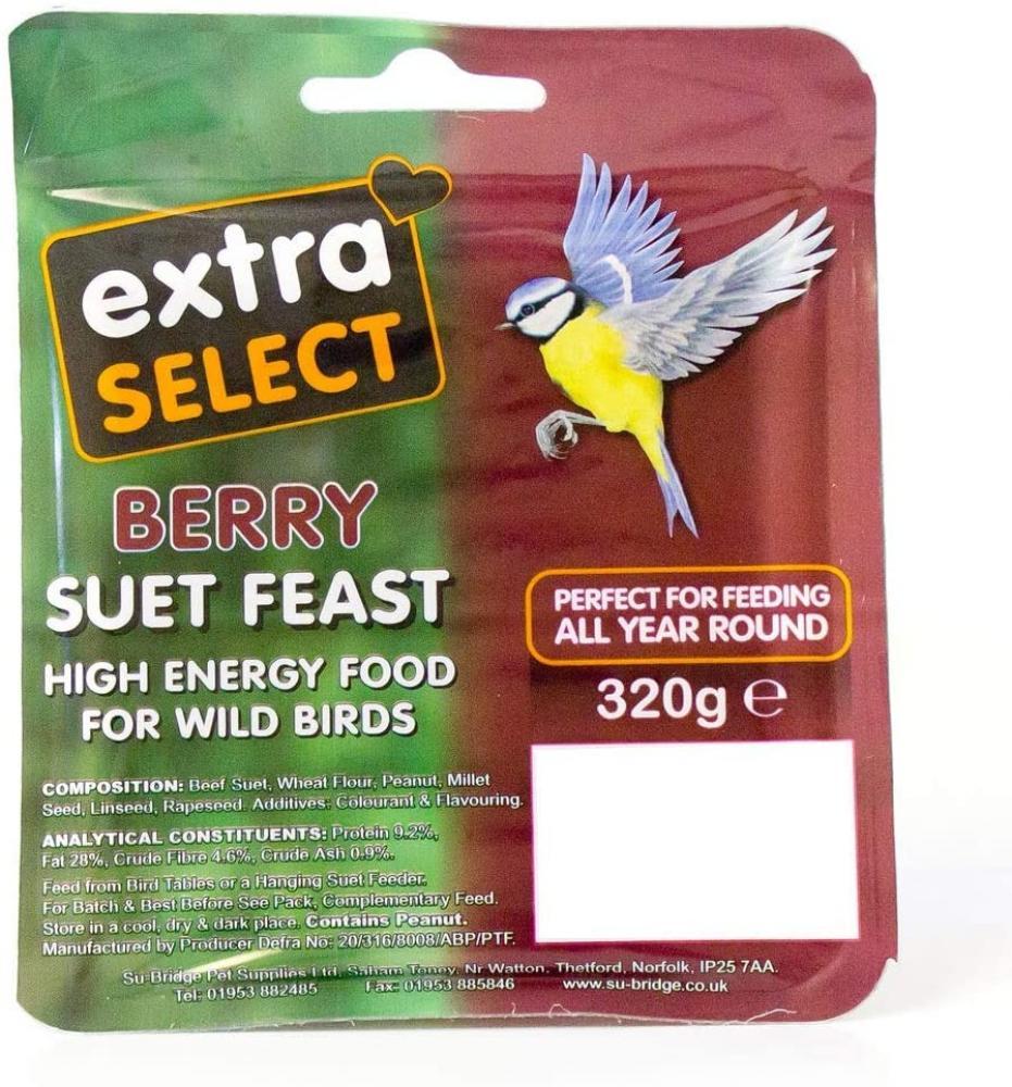 Extra Select Wild Bird High Energy Suet Block Wild Berry 320 g